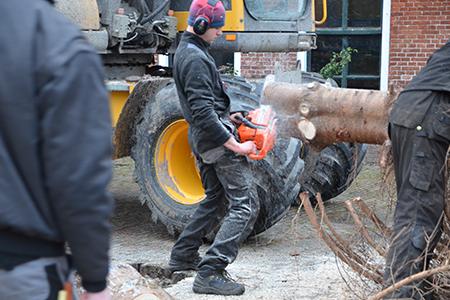 Jongeren zorgen voor kerstboom in Blije