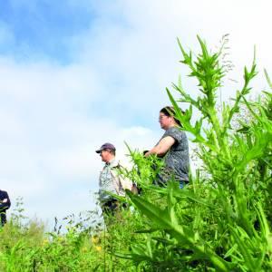 Boeren maken zich zorgen over toekomst 'bûtendyks'