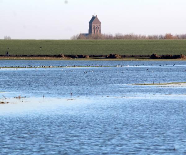 Met veerboot van Ferwert naar Ameland?